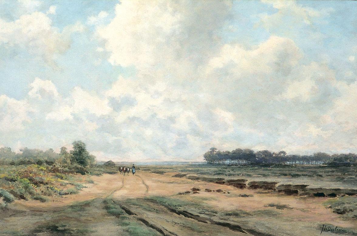 Heather landscape.