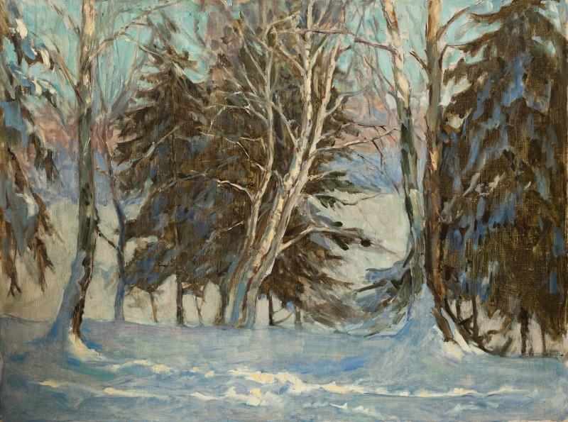 Зима. Витенево. Голубой лес.