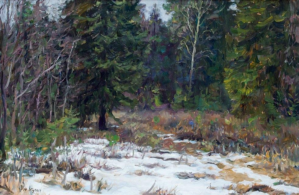Весной в лесу.