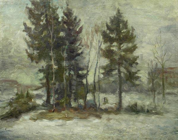 Весенний пейзаж с елками.