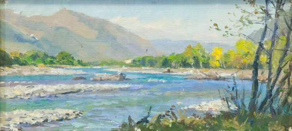 Река на Красной Поляне.