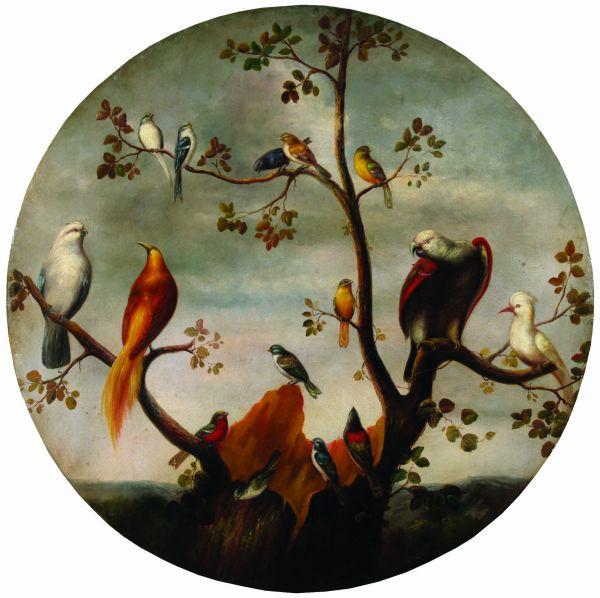 Птицы в саду.