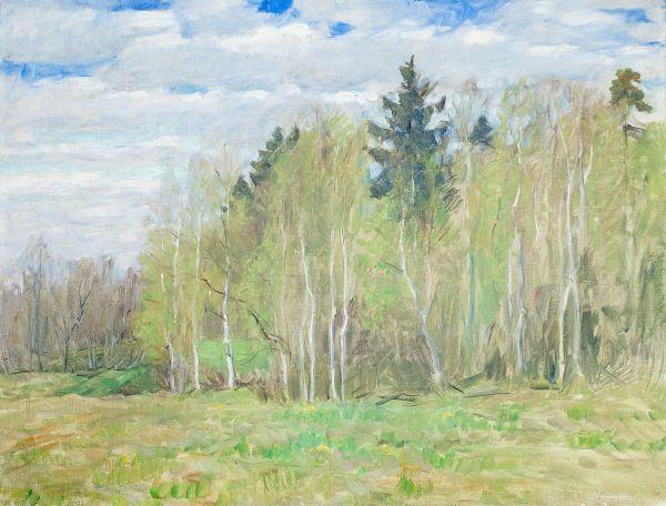 Весенний пейзаж.