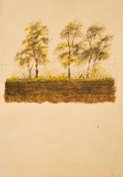 Иллюстрация к книге С.Я. Маршака «О чем говорили лошади, хомяки и куры».