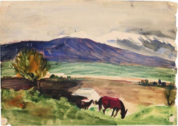 Ферганская долина.