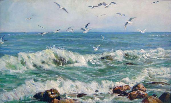 Море. Чайки.