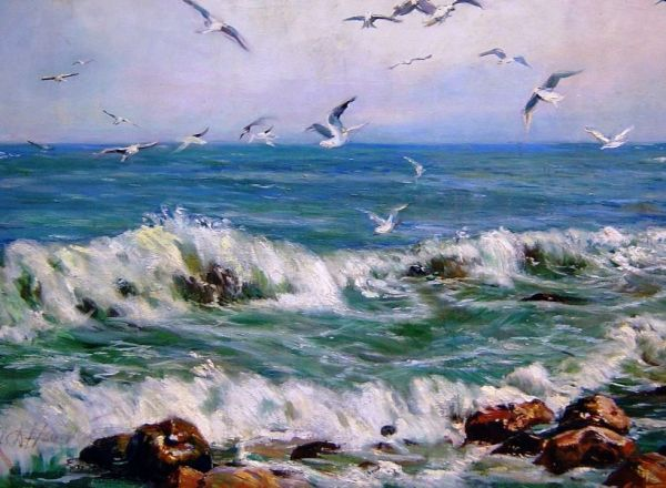 Море.Чайки.